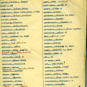 1ª  Vocabulário pág. 98 a 143- Dialeto imakua
